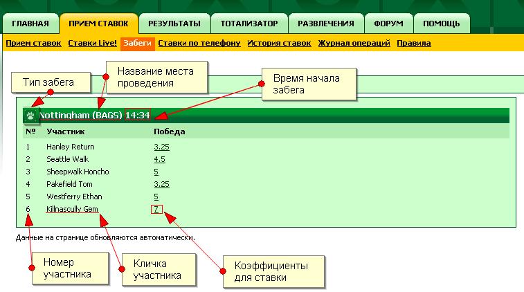 Как правильно сделать ставку в конторе - Mobile-health.ru